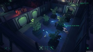 maia_steam_early_access_4